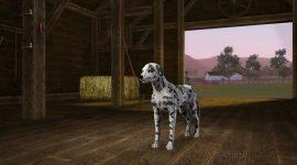 gamescom2011-sims3-einfach-tierisch-lebensdauer