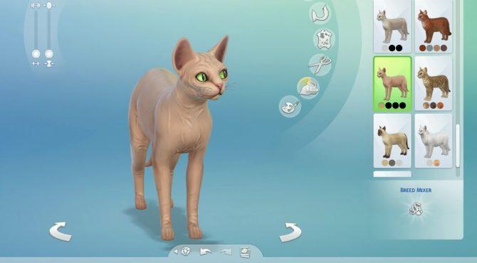 Neue Details Aus Dem Livestream Zu Die Sims 4 Hunde Und Katzen Simtimes