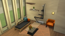 Sims 4 Fitness BUILD BUY 06