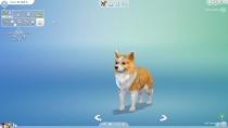 sims4-hunde-katzen-cap-032