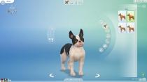 sims4-hunde-katzen-cap-034