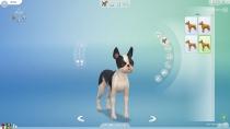 sims4-hunde-katzen-cap-035