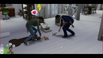 Die Sims 4 - Hunde und Katzen - Stream Livemodus - 31