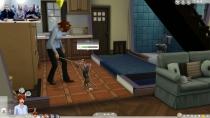 Die Sims 4 - Hunde und Katzen - Stream Livemodus - 33