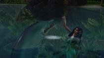 Die-Sims-4-Inselleben-08-Gameplay-Delfin-02