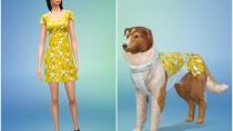 Die Sims 4 - Mein erstes Haustieraccessoires - CAS 04