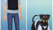Die Sims 4 - Mein erstes Haustieraccessoires - CAS 05