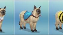Die Sims 4 - Mein erstes Haustieraccessoires - CAS 10