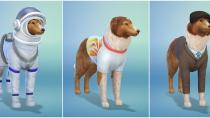 Die Sims 4 - Mein erstes Haustieraccessoires - CAS 12