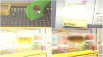 Die Sims 4 - Mein erstes Haustieraccessoires - Gameplay 03
