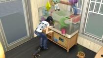 Die Sims 4 - Mein erstes Haustieraccessoires - Gameplay 06