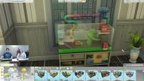 Die Sims 4 - Haustier Accessoires 08