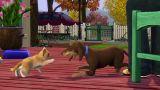 Die Sims 3: Einfach tierisch (PC)