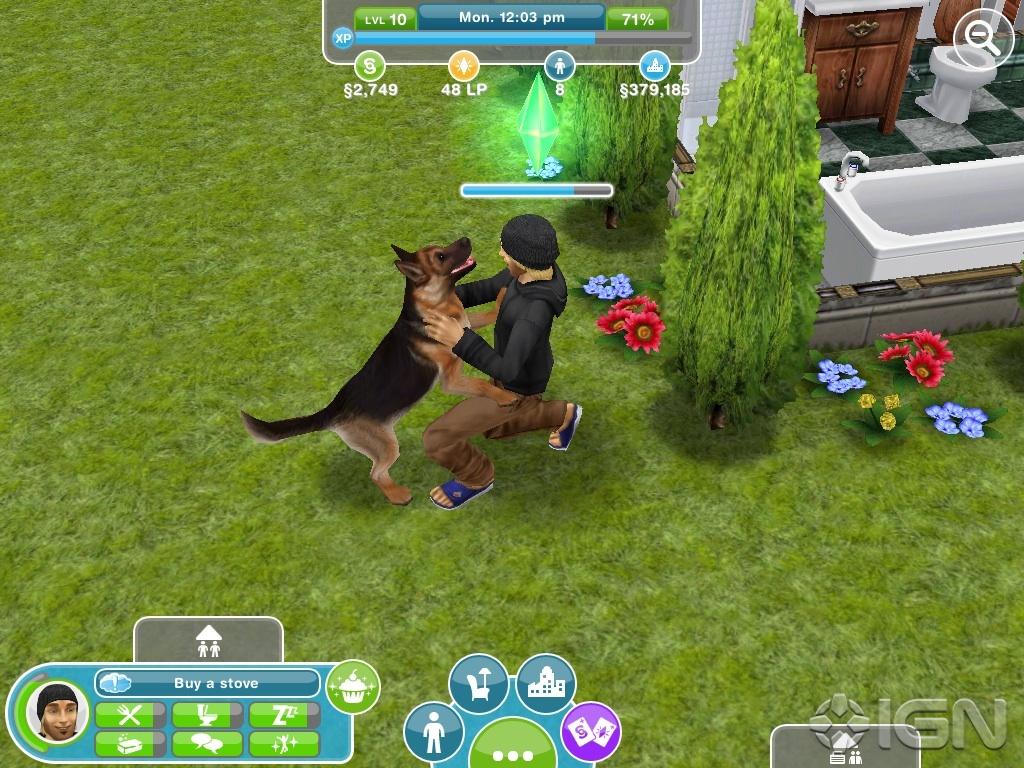 Sims  Pets Dog Wedding