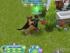 the_sims_freeplay2