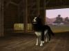 gamescom 2011 - Die Sims 3: Einfach tierisch